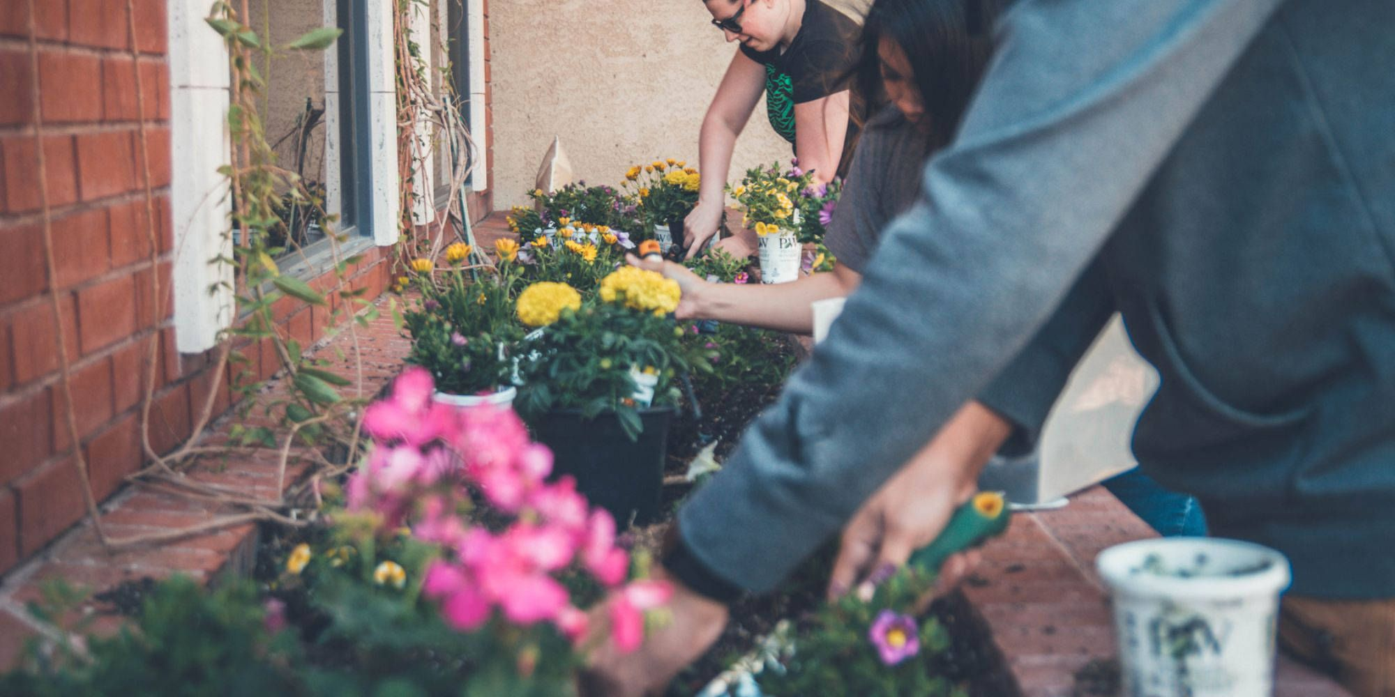 3 ways to create a more eco-conscious community